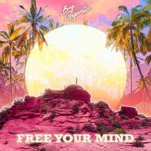 Big Gigantic Free Your Mind album cover