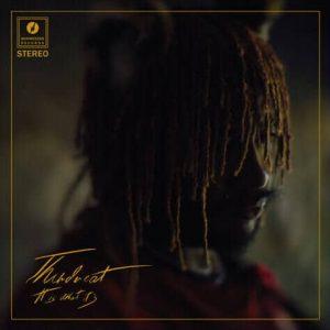 Thundercat 2020 album